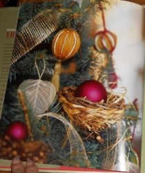 Holidays: Recipes, Gifts and Decorations: Thanksgiving and Christmas